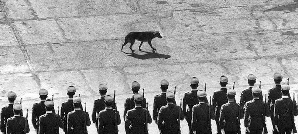 Gegenwind-Wachsoldaten vor llendes Amtssitz